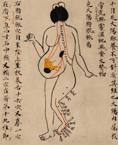 Acupuncture - Dr. Olivier Cuignet